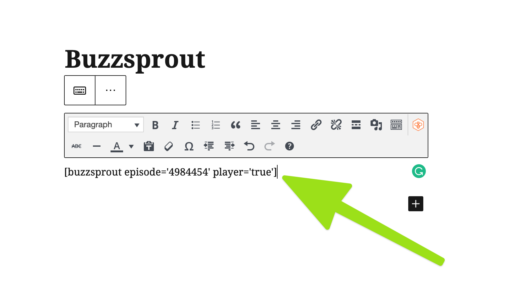 Buzzsprout WordPress Plugin Setup Step 5
